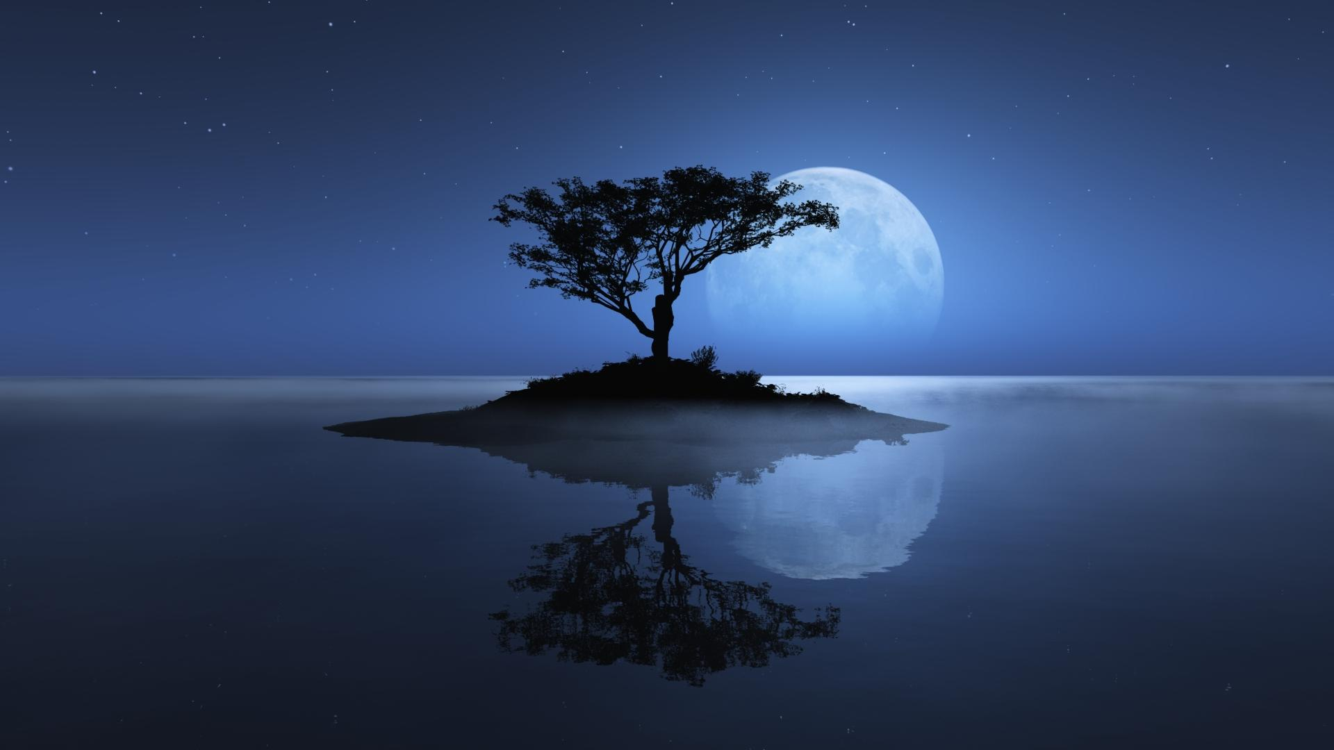 Poem Moon And Moon S Gleam These works have one thing in common: poem moon and moon s gleam